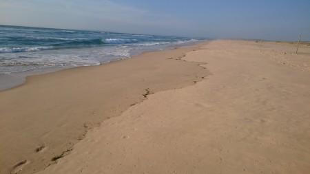 La plage ouest d'Arguin pour nous seuls