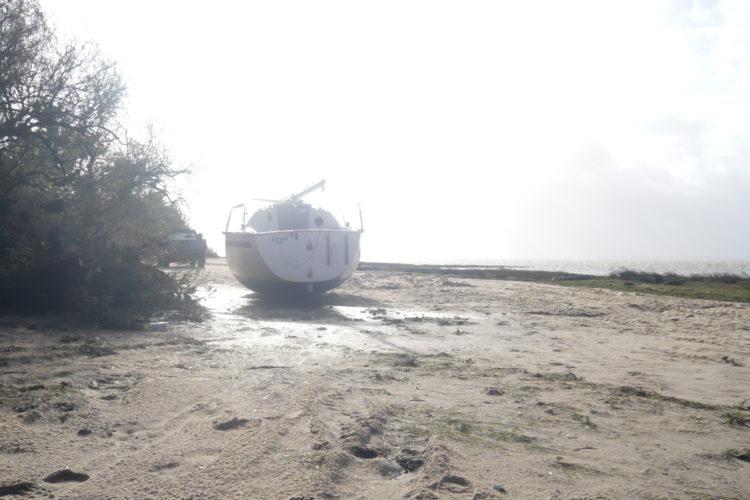 Iboga échouée à Saint-Brice