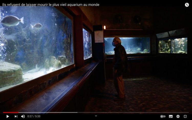 L'Aquarium d'Arcachon, le plus vieil aquarium public au monde
